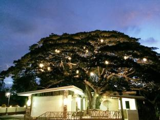 Eco Hotel Alona