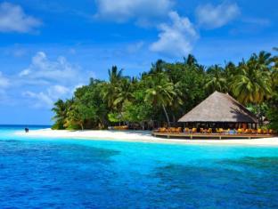 /lv-lv/angsana-ihuru-resort/hotel/maldives-islands-mv.html?asq=jGXBHFvRg5Z51Emf%2fbXG4w%3d%3d