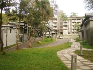 The Mountain Courtyard