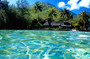 /da-dk/poerani-moorea/hotel/moorea-island-pf.html?asq=jGXBHFvRg5Z51Emf%2fbXG4w%3d%3d