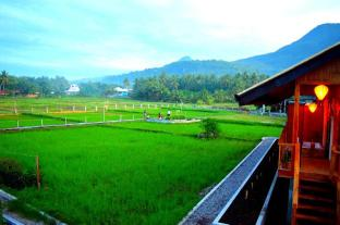/da-dk/guerrera-rice-paddy-villas/hotel/camiguin-ph.html?asq=jGXBHFvRg5Z51Emf%2fbXG4w%3d%3d