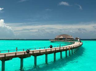 /ca-es/the-sun-siyam-iru-fushi-luxury-resort/hotel/maldives-islands-mv.html?asq=jGXBHFvRg5Z51Emf%2fbXG4w%3d%3d