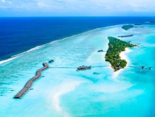 /ca-es/lux-south-ari-atoll/hotel/maldives-islands-mv.html?asq=jGXBHFvRg5Z51Emf%2fbXG4w%3d%3d