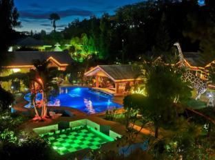 /ca-es/deep-forest-garden-inn/hotel/palawan-ph.html?asq=jGXBHFvRg5Z51Emf%2fbXG4w%3d%3d