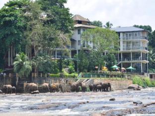 /ca-es/hotel-elephant-bay/hotel/pinnawala-lk.html?asq=jGXBHFvRg5Z51Emf%2fbXG4w%3d%3d