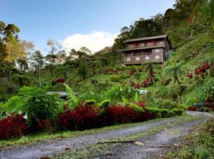 /ca-es/kinabalu-mountain-lodge/hotel/kinabalu-national-park-my.html?asq=jGXBHFvRg5Z51Emf%2fbXG4w%3d%3d