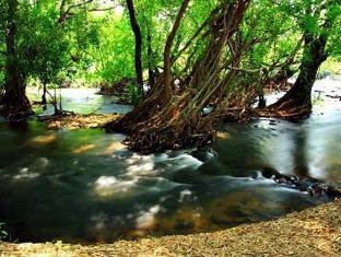 /th-th/natural-park-resort-de-wang-thong/hotel/phitsanulok-th.html?asq=jGXBHFvRg5Z51Emf%2fbXG4w%3d%3d