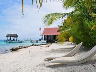 /ar-ae/pension-paparara-dive-and-lodge/hotel/fakarava-pf.html?asq=jGXBHFvRg5Z51Emf%2fbXG4w%3d%3d