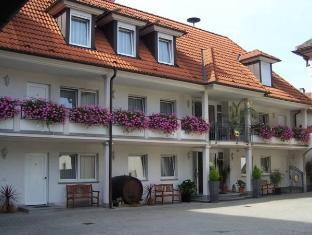 /es-es/gasthof-lowen/hotel/breisach-am-rhein-de.html?asq=jGXBHFvRg5Z51Emf%2fbXG4w%3d%3d