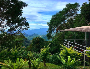 /ar-ae/j-residence/hotel/kinabalu-national-park-my.html?asq=jGXBHFvRg5Z51Emf%2fbXG4w%3d%3d