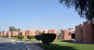 /da-dk/one-to-one-hotel-resort-ain-al-faida/hotel/al-ain-ae.html?asq=jGXBHFvRg5Z51Emf%2fbXG4w%3d%3d