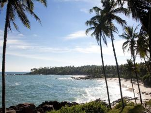 /da-dk/palm-paradise-cabanas-villas/hotel/tangalle-lk.html?asq=jGXBHFvRg5Z51Emf%2fbXG4w%3d%3d