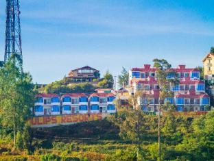 /da-dk/tulips-elkhill-resorts/hotel/ooty-in.html?asq=jGXBHFvRg5Z51Emf%2fbXG4w%3d%3d