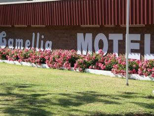 /da-dk/camellia-motel/hotel/narrandera-au.html?asq=jGXBHFvRg5Z51Emf%2fbXG4w%3d%3d