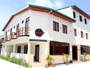 /cs-cz/whiteshell-island-hotel-spa-at-maafushi/hotel/maldives-islands-mv.html?asq=jGXBHFvRg5Z51Emf%2fbXG4w%3d%3d