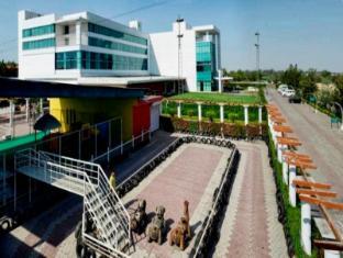 /ar-ae/hotel-amer-greens/hotel/bhopal-in.html?asq=jGXBHFvRg5Z51Emf%2fbXG4w%3d%3d