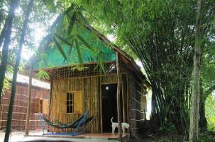 /ca-es/green-village-homestay/hotel/can-tho-vn.html?asq=jGXBHFvRg5Z51Emf%2fbXG4w%3d%3d