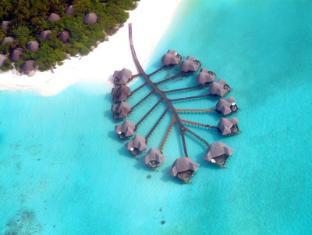 /cs-cz/coco-palm-dhuni-kolhu/hotel/maldives-islands-mv.html?asq=jGXBHFvRg5Z51Emf%2fbXG4w%3d%3d
