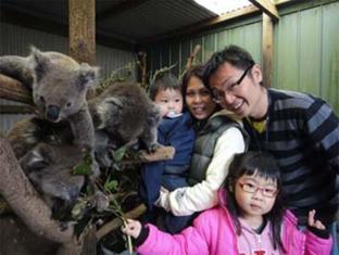 /hr-hr/fauna-australia-wildlife-retreat/hotel/great-ocean-road-lavers-hill-au.html?asq=jGXBHFvRg5Z51Emf%2fbXG4w%3d%3d