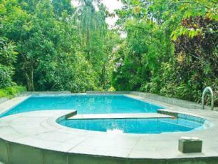 Chandis Paradise Hotel