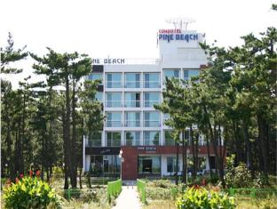 /cs-cz/pine-beach-condotel/hotel/yangyang-gun-kr.html?asq=jGXBHFvRg5Z51Emf%2fbXG4w%3d%3d