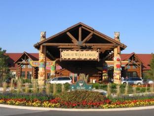 /sv-se/great-wolf-lodge/hotel/niagara-falls-on-ca.html?asq=jGXBHFvRg5Z51Emf%2fbXG4w%3d%3d