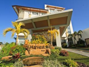 /ar-ae/the-harvest-hotel-managed-by-hii/hotel/cabanatuan-ph.html?asq=jGXBHFvRg5Z51Emf%2fbXG4w%3d%3d