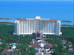 /cs-cz/luxze-hitotsuba-cottage-himuka/hotel/miyazaki-jp.html?asq=jGXBHFvRg5Z51Emf%2fbXG4w%3d%3d