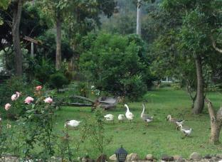 /da-dk/at-home-chiang-dao-resort/hotel/chiang-dao-th.html?asq=jGXBHFvRg5Z51Emf%2fbXG4w%3d%3d
