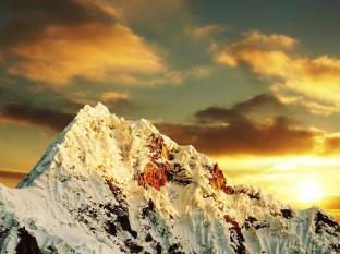 /bg-bg/sunset-motel/hotel/fox-glacier-nz.html?asq=jGXBHFvRg5Z51Emf%2fbXG4w%3d%3d